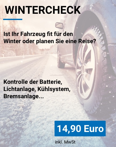 Angebot Wintercheck